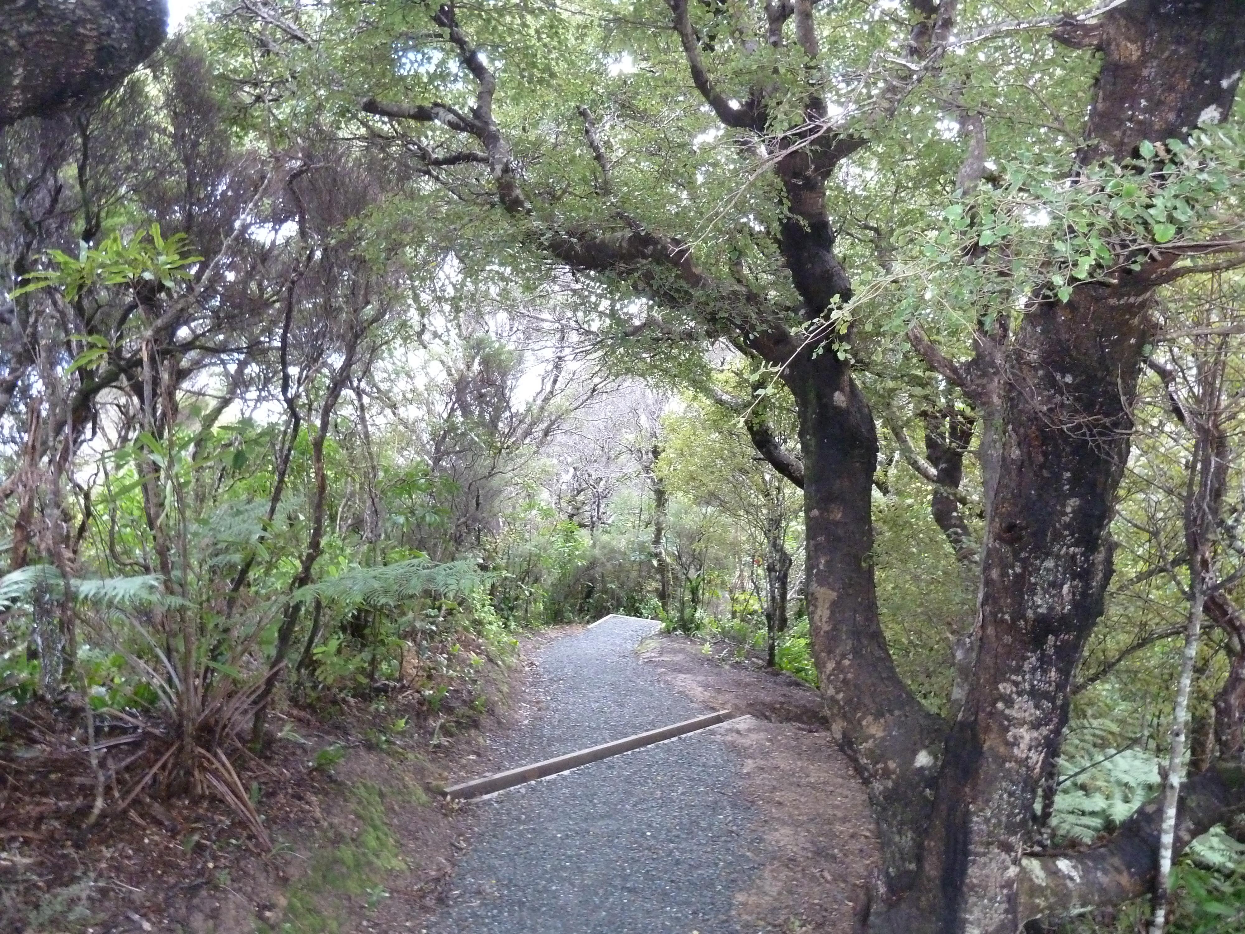 The Eastern Traverse, Wellington Walks