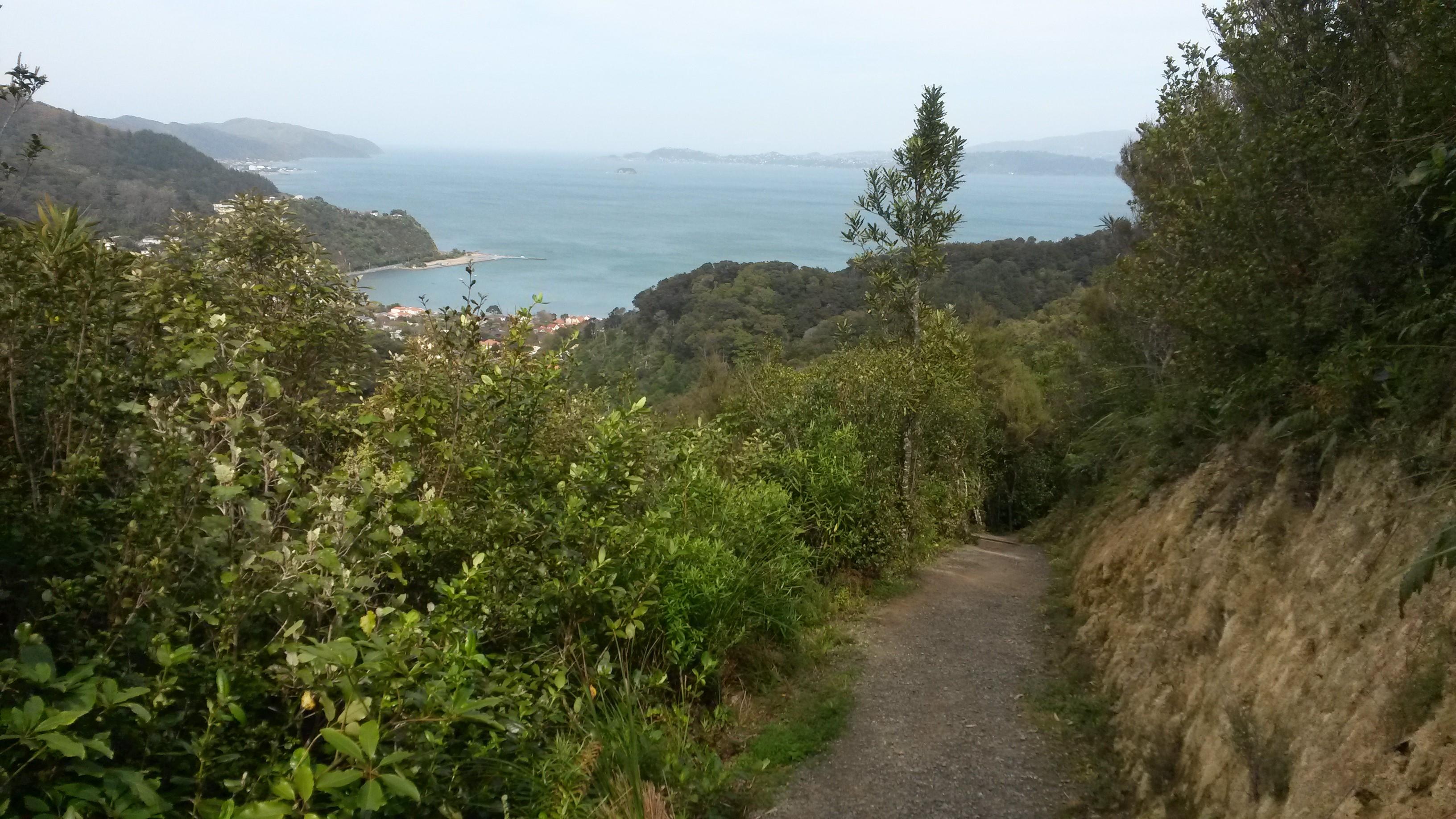 Point Howard Walk, Wellington Day Walks