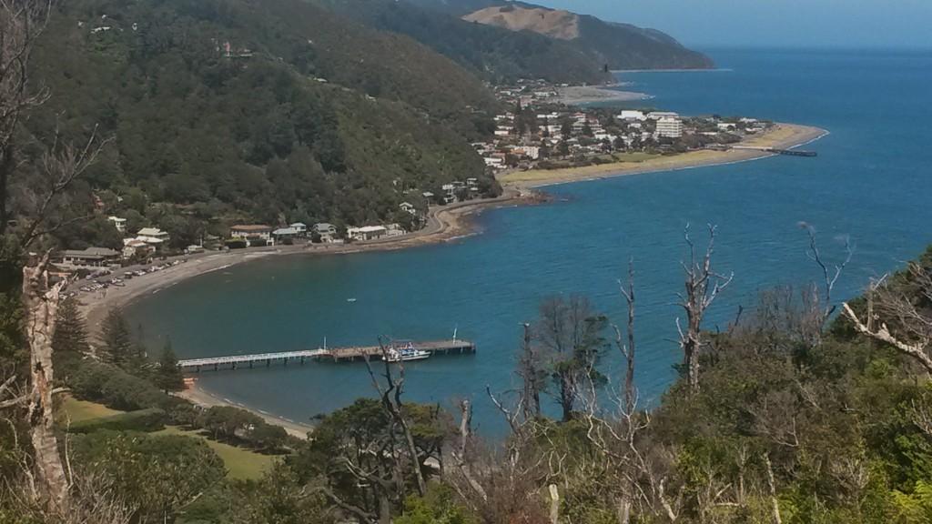 Wellington Walks