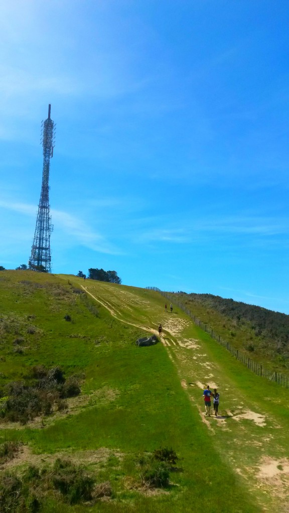 Mount Kaukau Walk