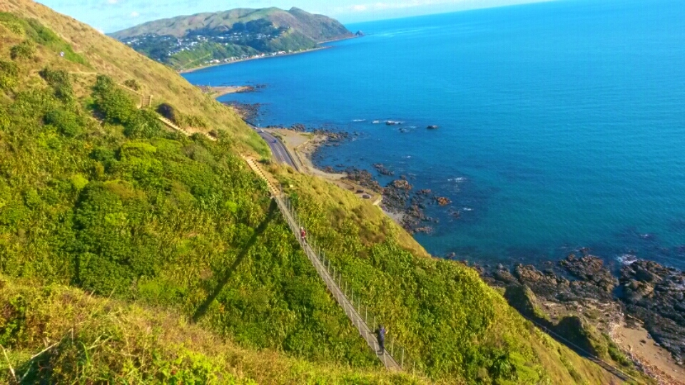 The Escarpment Track, Wellington Day Walks