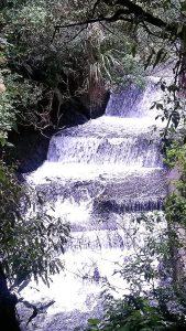 Korokoro Dam, belmont regional park, wellington day walks, belmont trig walk