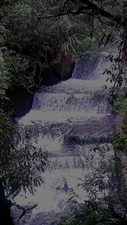 Wellington day walks, korokoro dam, belmont trig walk, belmont regional park
