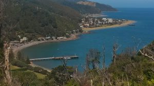 Wellington Day Walks