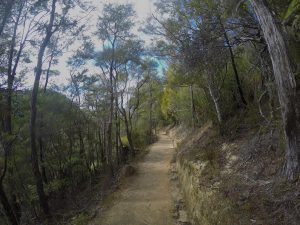 Bark Bay to Marahau day walk, Able Tasman National Park
