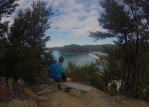 Abel Tasman Day Walks, Bark Bay to Marahua day walk, Abel Tasman National Park